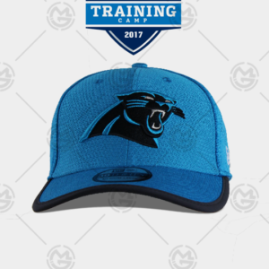 Gorra New era Carolina Panthers 39 thirty curva azul 0191322550172